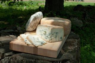 cheese-outside